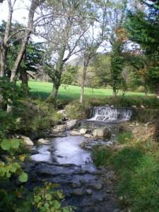 riviere 1